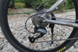 Bicicleta da montanha de 26 Pama com 27 velocidades