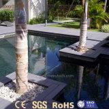Beständiger im Freien hölzerner zusammengesetzter UVplastikdecking für Pool