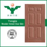 Peau de porte moulée par placage chaud de vente pour la porte intérieure