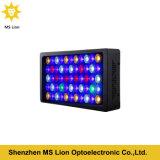 Luz inteligente profesional del acuario del LED para el filón coralino