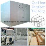 Фабрика камеры охлаждения