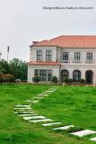 Строительного материала плитки толя глины крыши украшения плитки крыши материального испанские