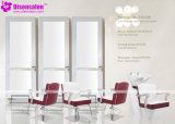 De populaire Stoel Van uitstekende kwaliteit van de Salon van de Kapper van de Spiegel van het Meubilair van de Salon (2035E)