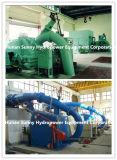 Гидроэлектроэнергия/Hydroturbine емкости 100~1000kw/горизонтальной турбины Pelton гидро (вода) малая