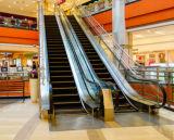 Scala mobile esterna dell'interno 35 del centro commerciale 30