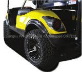 Lámpara Automotive Juego de luces LED Yam unidad de lujo para el carro de golf