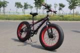 Bici gorda de la nieve del neumático del poder más elevado (ly-a-19)