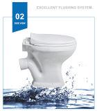 Weidansi Afrique en céramique lavent P-Enferment vers le bas deux parties de la toilette (WDS-T6209)