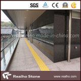Zurechtgeschnittenes Black Galaxy Stone Granite Tile für Wall