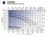 Bomba da piscina (SCP) com padrão do mercado dos EUA
