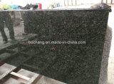 Controsoffitto della costruzione prefabbricata del granito di Verde Ubatuba