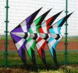 Cervo volante di prodezza Fy20160221-105