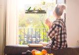 AcrylLarge Window Bird Feeder - Best für Unlimited Views von Wild Birds From Inside Houses