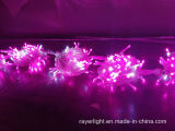 100leds 10m LED luces de la secuencia para la fiesta de la Navidad