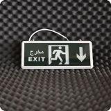 Migliore indicatore luminoso dell'uscita di sicurezza di prezzi LED/indicatore luminoso arabo dell'uscita della lettera