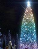 Lumières artificielles extérieures d'arbre de Noël DEL de décoration