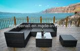 組合せの屋外の藤または枝編み細工品のソファーの余暇の庭の家具