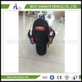 Motorino dell'equilibrio di auto delle rotelle di alta qualità 500W 2