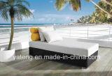 高品質の総合的な円形の藤のPE藤の屋外のプールの倍のラウンジのベッド(YTF326)