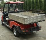 Lsv, EWG, Street Legal Electric Car mit Aluminium für italienisches Market