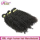 Cheveux humains 100% de Remy de Vierge d'usine malaisienne de cheveux