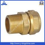 Guarnición recta de cobre amarillo de la cuerda de rosca masculina para el agua (YD-6013)