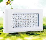 La qualité DEL hydroponique élèvent le large spectre léger élèvent la lumière