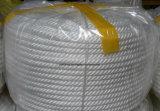 Multifilament Kabel van het Polypropyleen van China de Manufacturering Gevlechte