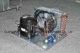 Refrigerador de la torta del diseño del sistema de enfriamiento del ventilador nuevo