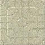 الطابق المزجج بلاط السيراميك (3133)