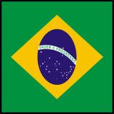 브라질 TUV를 가진 표준 전원은 10A/12A/16A를 승인했다