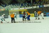 Het Schaatsen van de Rol van Nicecourt Modulaire Bevloering, het Hof van het Hockey (het Schaatsen Piste)