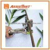 V-Отрежьте верхний прививая инструмент для прививать фруктовые дерев дерев и лозы