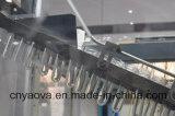Automatische het Vormen van de Slag van de Rek van de Flessen van het Huisdier 2000ml Kosmetische Machine