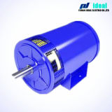 Brushless DC Generator (alternatori) usate per Electromobile