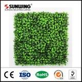 Самая лучшая продавая Eco-Friendly пластичная искусственная стена листьев ПЛЮЩА