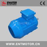 IE3 Premium Efficiency Motor in RAL5015