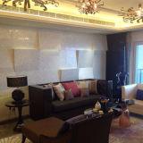 Luxuxentwurfs-natürliche Farben-Perlmuttshell-Mosaik-Fliese