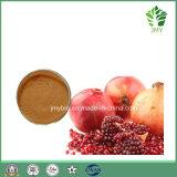 최신 판매 석류 씨 추출 40%~90% Ellagic 산