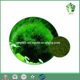 100%の自然なクロレラのエキスの粉のクロロフィル3%のビタミンB2