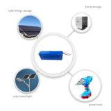 2000times Batterie-Satz der Solarbatterie-12V 120ah LiFePO4 mit BMS