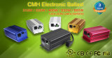 330d Ballast Met lage frekwentie van uitstekende kwaliteit 330 de Ballast van Watts CMH voor Serre