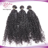 O cabelo malaio empacota a tecelagem Kinky do cabelo Curly de cabelo humano