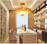 Lampada Pendant di vetro Bl-667 di stile dell'hotel con il coperchio del metallo dell'oro