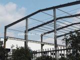 Het Staal van lage Kosten - de frame Gebouwen van het Pakhuis, van de Workshop en van het Staal