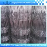 Grassland Fence/Wire Mesh /Fencing