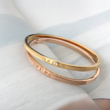 Schrobt het Geplateerde Roestvrij staal van de Juwelen van de Manier van Europa Goud de Armband van de Armband