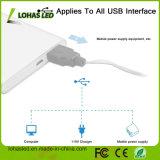Водоустойчивый напольный теплый белый Fairy звёздный свет шнура USB СИД для домашнего украшения
