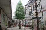인공적인 삼목 나무 옥외 6 미터