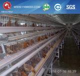 Оборудование цыплятины наслаивает клетку цыпленка для Африки